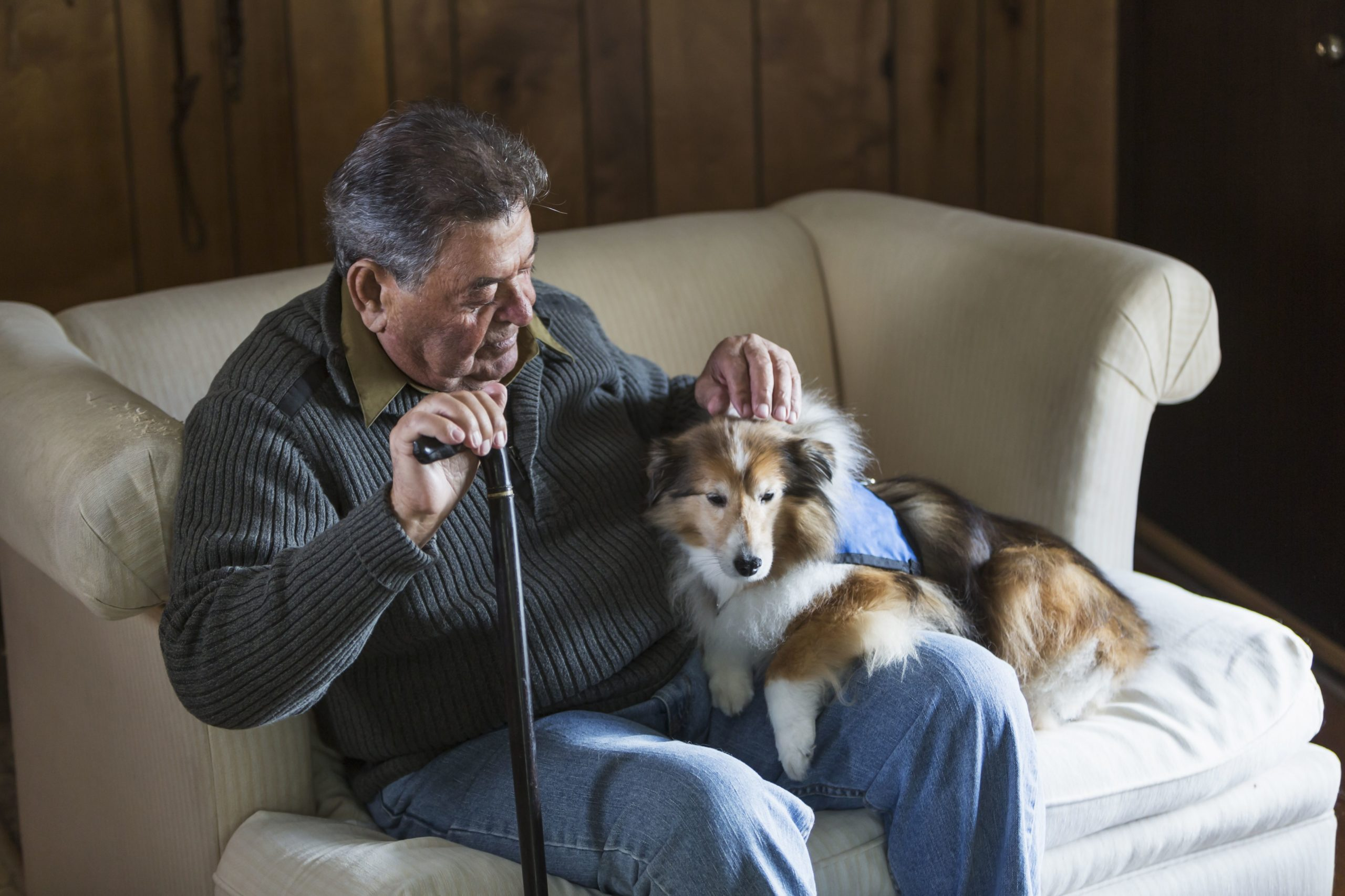 Benefits of Animal-Assisted Therapy for Seniors ...